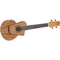 Ibanez EW Cutaway Concert Acoustic-Electric Ukulele With Bag | GuitarCenter