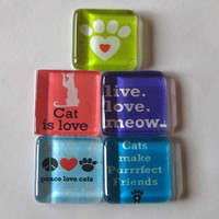 Cat Lover Square Glass Magnets Set of 5