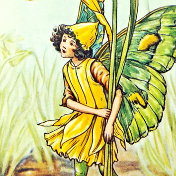 Daffodil Flower Fairy, Flower Fairies Picture, Cicely Mary Barker Print, Fairy picture