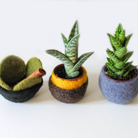 Felt Planter  Felted Pod Desk Organizer Winter Decor Little Storage Bowl Eco-friendly