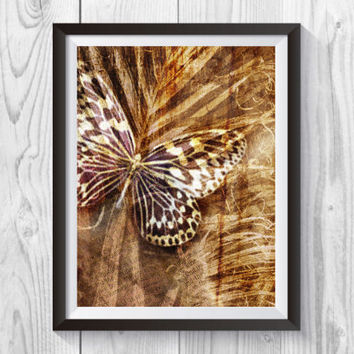 Collage butterfly Photography Print,  Butterfly Sepia Print, Sepia, Butterfly Wall Decor