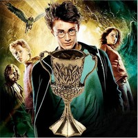 Harry Potter Harry Potter Hufflepuff converted the