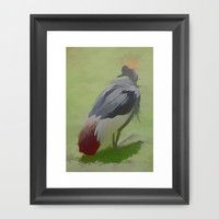 African Crowned Crane Framed Art Print by Photography By Pamela