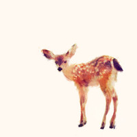 Fawn Art Print by Amy Hamilton | Society6