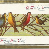 Antique Postcard A Merry Christmas and A Happy New Year Song Birds on a Branch