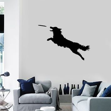 Vinyl Wall Decal Dog Frisbee Disc Pet Shop Animal Decor Art Stickers Mural (ig5642)