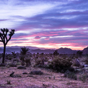 Desert Sunset Wall Art Print -- Fine Art landscape photography, California, Joshua Tree, Home Decor, by HeatherRobersonPhoto