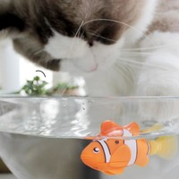 [MPK Store] Robofish, Battery-Powered Fish, Water Robot, Cat Toy, Water Activated Robo Fish, Green Seahorse