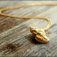Conch Shell Necklace, Available in Silver or Gold