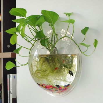 Hanging Plant Flower Glass Ball Vase Terrarium Wall Fish Tank Aquarium Decor UK