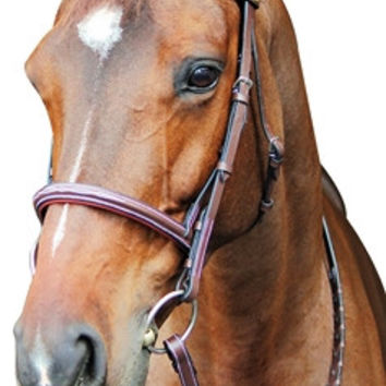 Henri de Rivel Pro Fancy Raised Comfort Crown Padded Bridle