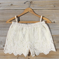 Honey Lace Shorts