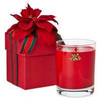 14 oz Candle Gift Box, Christmas Thyme, Filled Candles