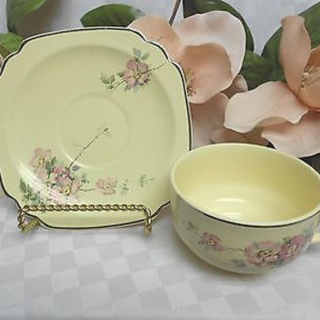 Wells (Homer Laughlin) China Dinnerware Century shape Briar Rose Cup and saucer