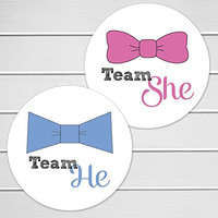 """2"""" Gender Reveal Stickers, Team He and Team She Stickers (#367)"""