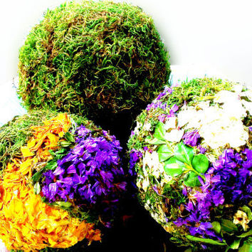 SET natural moss flower balls decorative balls pomander ball orbs spheres green bowl filler vase filler tabletop decor preserved moss spring