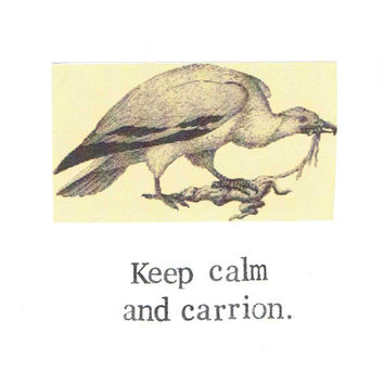 Keep Calm And Carrion Vulture Card | Funny Natural History Vintage Nature Bird Humor Nerdy Gothic Taxidermy Oddities