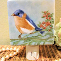 Night Light Bird Blue Plug in Lamp Lighting Porcelain Ceramic Hand Painted blm