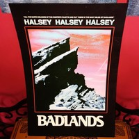 """Exclusive Halsey Badlands poster. 18"""" x 12"""" These were only ..."""