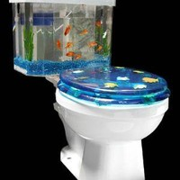 Toilet Aquarium ? Funny, Bizarre, Amazing Pictures & Videos