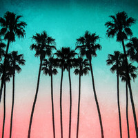 Palm Trees 3 Art Print by Mareike Böhmer Photography