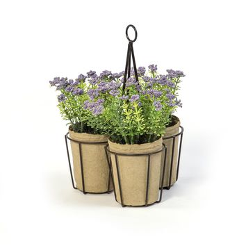 SET OF 3 PURPLE YARROW  IN METAL CONTAINER