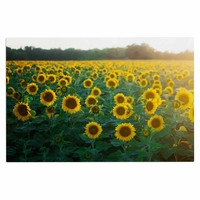 "Chelsea Victoria ""Sunflower Fields"" Floral Photography Decorative Door Mat"