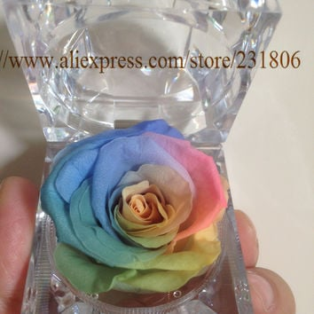 Free shipping,Preserved rose eternal flower ring box colorful roses,Key chain,Valentine's Day gift,natural,real.Christmas gift