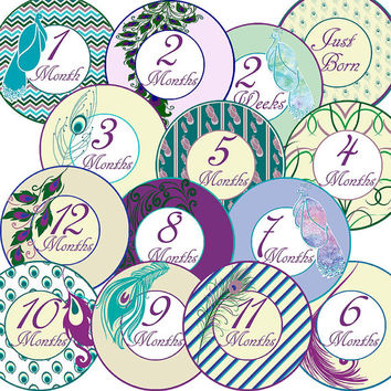 14 Peacock Feathers Elegant Classic Baby Girl Monthly Milestone Onesuit Stickers Newborn Shower Gift