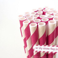 Paper HOT PINK Striped Straws Hot Pink and White Stripe - set of 25 w/ DIY Straw Flags pdf