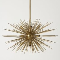 Astra Chandelier by Anthropologie Bronze One Size Lighting