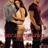 Twilight Saga, The: Breaking Dawn Part 1 [DVD]
