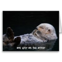 One Way Or The Otter Sea Otter Greeting Card