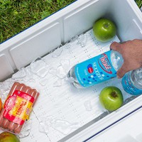 The Cooler Tray | Cooler Divider