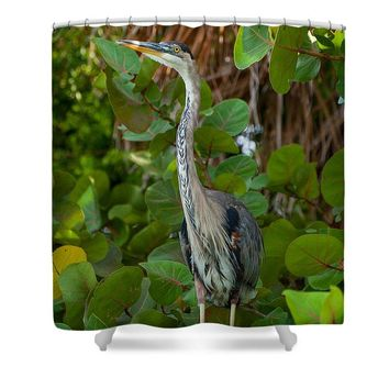 Heron In Sea Grapes - Shower Curtain