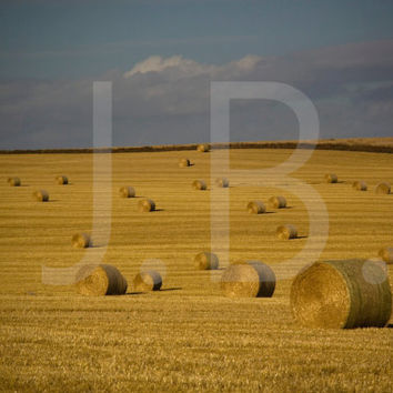 Country Bales Canvas Wall Art
