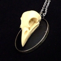 Raven skull cameo necklace