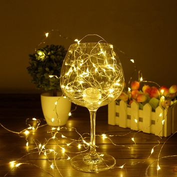 Copper Silver Wire LED String lights Waterproof
