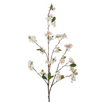 Blossom Apple Branch: Cream 45""