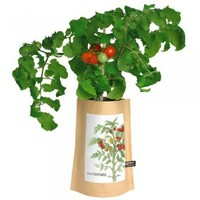 Garden in a Bag: Tomato : Branch: Sustainable Design for Living