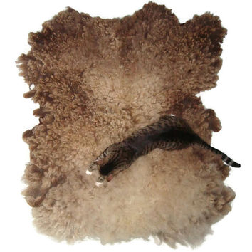 Wool Cat MultiCat Bed Sheep-friendly Pet Bed Felted Fleece Rug - Moorit Shetland - Supporting American Small Farms