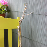Bundled Driftwood Branches for Mantle Decor , Beach Wedding Decoration and  Natural Bohomian Home Decor