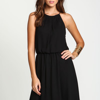 Pleated Chiffon Fit and Flare Dress