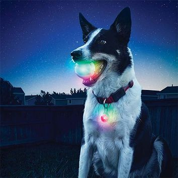 Pet Dog Play Chew Fluorescent Ball Toys Light Glow Pets Interactive Toy Gift