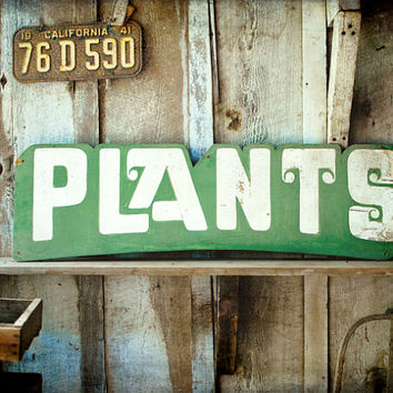 Photography - Garden Sign wood vintage licence plate farmhouse barn garden plants country life 8x10 Fine Art Photography