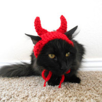 Cat Devil Hat- Knit Cat Hat- Cat Halloween Costume - Pet Halloween Costume - Cat Photo Prop - Cat Christmas Present - Kitten Satan Hat