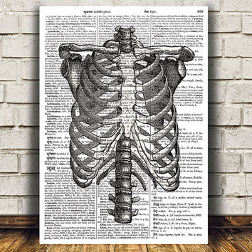 Rib cage poster Anatomy print Dictionary print Steampunk decor RTA1169