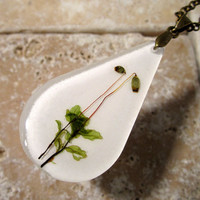 Rhizomnium glabrescens Necklace, moss, plant jewelry, bryophyte jewellery ,