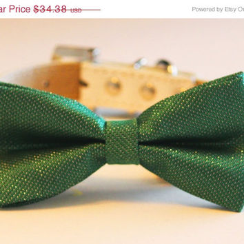Emerald Green Dog Bow Tie attached to leather collar, Pet wedding Accessory, Dog Lovers, Spring wedding