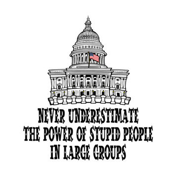 Funny Political Shirt Power Of Stupid People in Large Groups Mens Womens Youth Capitol Building Humorous Government Tee XL Congress Tshirt